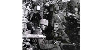 TURTLÈN OF WAR – WWI